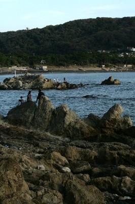 091011_葉山06.JPG